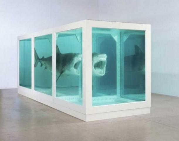 Künstler im Fokus | Damien Hirst- Haie in Formaldehyd